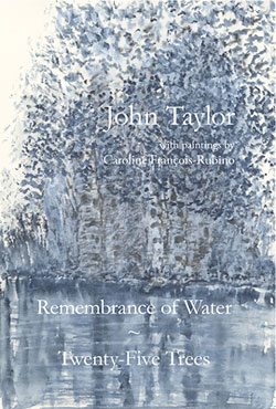 Remembrance of Water by John Taylor